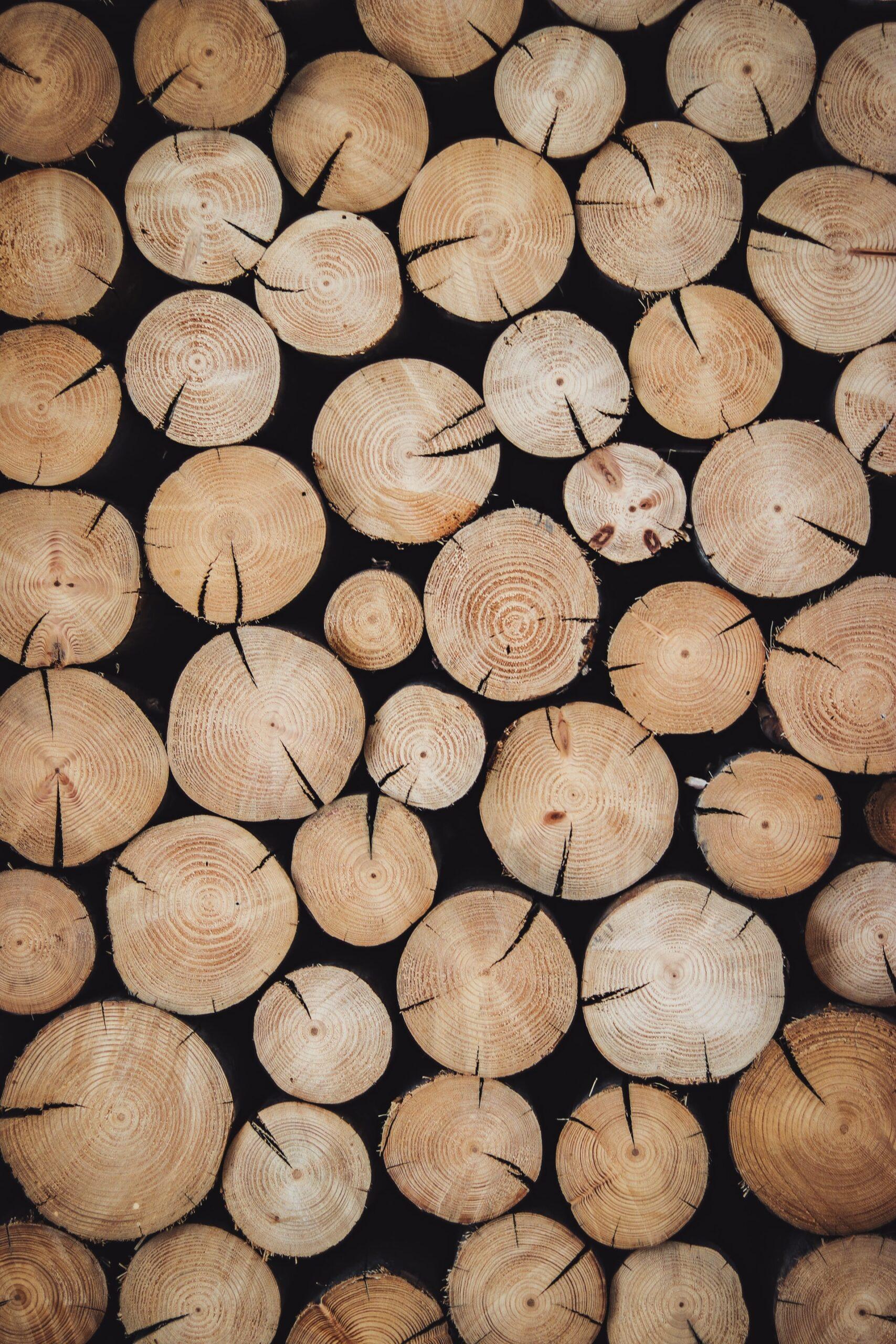 Wat is het beste hout voor tuinmeubelen?